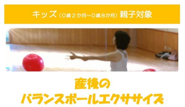 balance ball exercise.jpgのサムネイル画像